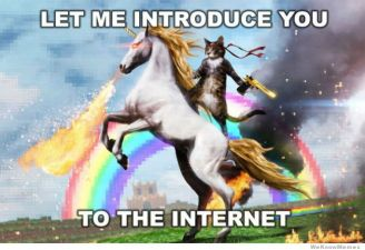 let-me-introduce-you-to-the-internet-meme